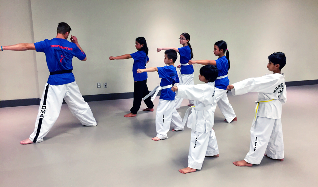 Destiny Martial Arts Class in Calgary